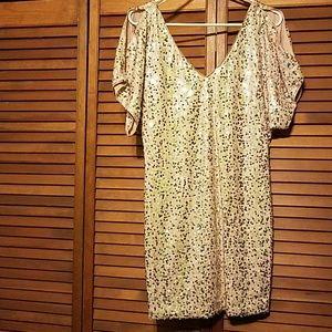 NWT Sequin Dress